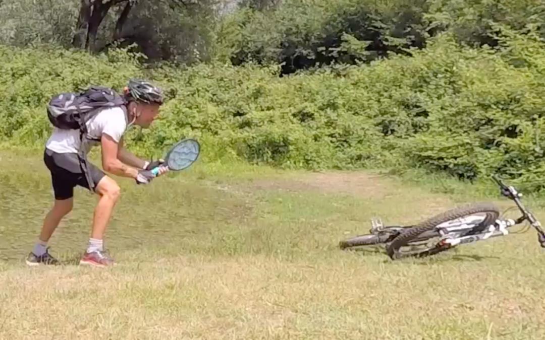 Zanzara o uomo, chi vincerà? Trappen!